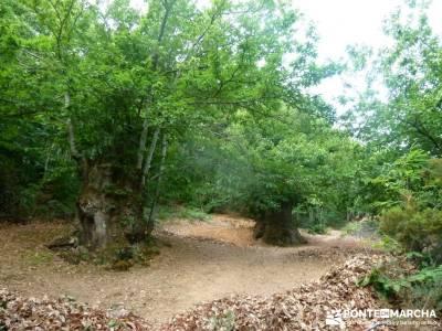Sierra del Caurel:Courel; Lugo_Galicia; foro senderismo rutas semana santa viajes valle del jerte en